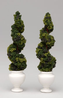 Pair of spiral topiaries in white jardineres