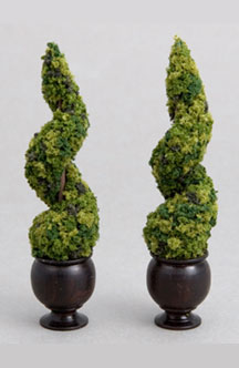 Pair of spiral topiaries in turned ebony pots